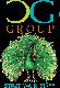The CG Group logo